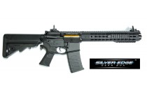 Low Profile Adapt Rail System Rifle