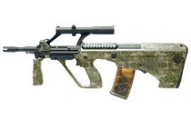 Para Model with Scope Atacs FG